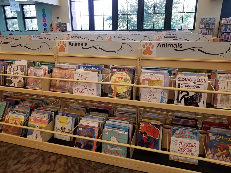 Picture books shelved in bins, so that you can see the covers of books.